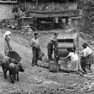 Vecinos usando una aventadora para separar el grano de la paja (1964).